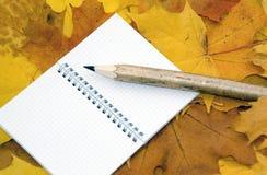 秋叶、笔记本和笔 免版税图库摄影