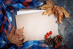 秋叶、莓果、野玫瑰果和杉木锥体在桌上 秋天背景复制空间 库存图片