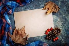 秋叶、莓果、野玫瑰果和杉木锥体在桌上 秋天背景复制空间 免版税库存图片
