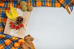 秋叶、莓果和杉木锥体在轻的背景 秋天背景 库存照片