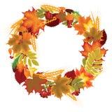 秋叶、莓果和耳朵花圈  免版税库存图片