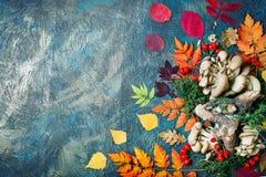 秋叶、蘑菇和莓果在黑暗的背景 秋天背景复制空间 免版税库存图片