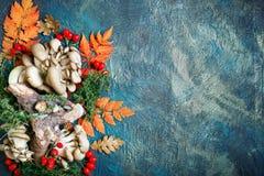 秋叶、蘑菇和莓果在黑暗的背景 秋天背景复制空间 图库摄影