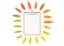 秋叶剪贴板纸最小的概念舱内甲板位置 库存图片