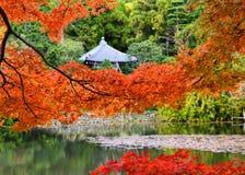 秋叶和一点寺庙,日本的颜色 免版税图库摄影