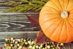 秋叶和南瓜反对年迈的木头,草,苹果 库存图片