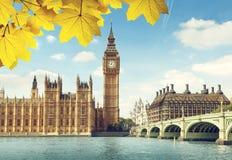 秋叶和大本钟,伦敦 库存照片