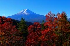 秋叶和富士山从Kawaguchiko小山 库存图片