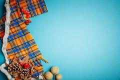 秋叶和杉木锥体在蓝色背景 秋天背景复制空间 免版税库存照片