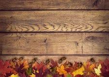 秋叶和橡子在土气木背景 免版税库存图片
