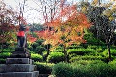 秋叶和狗雕象在Inari祀奉,京都 免版税库存图片