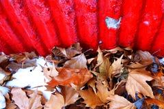 秋叶和红色混凝土墙 免版税库存照片