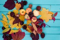 秋叶和苹果在木板 免版税库存照片