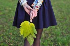 秋叶在妇女的手上 库存照片