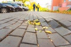 秋叶在瓦片阴云密布天一条残破的边路说谎  免版税图库摄影