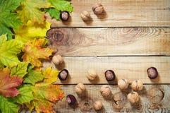 秋叶坚果和栗子在老木背景 免版税库存照片