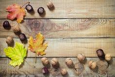 秋叶坚果和栗子在老木背景 免版税库存图片