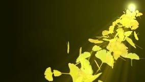 秋叶旋转  秋叶背景 CG银杏树圈动画 : E 库存例证