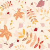 秋叶无缝的样式有淡黄色背景 免版税库存图片