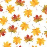 秋叶无缝的样式,水彩手拉的元素,纺织品的艺术品 库存图片