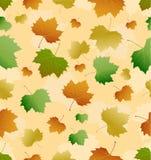 秋叶无缝的纹理  向量 免版税库存图片