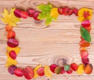 秋叶框架在木棕色背景的 免版税图库摄影