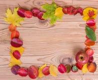 秋叶框架用在木棕色背景的苹果 库存图片