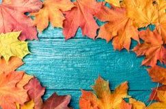 秋叶照片在蓝色桌上的 免版税库存图片