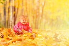 秋叶的愉快的逗人喜爱的小女孩 库存图片