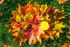 从秋叶的抽象背景 图库摄影