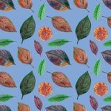 秋叶的无缝的样式在蓝色背景的 皇族释放例证