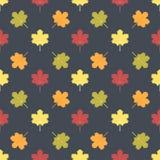 秋叶的无缝的模式 免版税库存图片