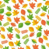 秋叶的无缝的模式 免版税图库摄影