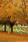 秋叶的阿灵顿公墓 免版税库存照片