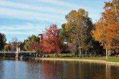 秋叶秋叶在波士顿公园里 库存照片