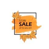 秋叶红色销售额字 也corel凹道例证向量 橙色刷子冲程和黑框架与黄色现实叶子 为销售额横幅 库存图片