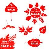 秋叶红色销售额字 在叶子的传染媒介元素 免版税库存图片