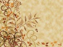 秋叶羊皮纸 库存图片