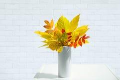 秋叶花束在一个白色花瓶的在内部 白色砖背景 库存图片
