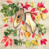 秋叶金黄鞋子 时尚舱内甲板位置 背景几何老装饰品纸张葡萄酒 库存图片