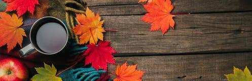 秋叶,两个杯子酒,与格子花呢披肩的红色苹果在老葡萄酒木背景 库存照片