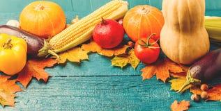 秋叶,南瓜,蕃茄,石榴,玉米被定调子的照片  免版税库存图片