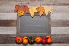秋叶,在木背景的南瓜与在黑板的拷贝空间 库存图片
