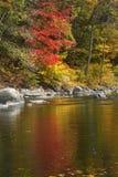 秋叶, Conn的明亮的反射在法明顿河的 库存照片