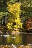 秋叶, Conn的明亮的反射在法明顿河的 库存图片