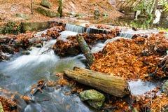 秋天、森林、五颜六色的叶子和瀑布,小河,湖视图 图库摄影