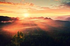 秋天一座美丽的山的日出全景在反向内 从重的fogg增加的小山峰顶  库存照片