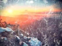 秋天一座美丽的山的日出森林在反向内 从雾增加的树梢 免版税库存图片