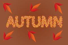 秋天上色了叶子文本 库存图片
