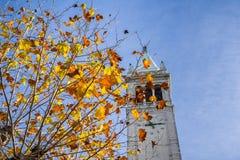秋天上色了在蓝天背景的叶子;钟楼萨瑟塔在背景中 免版税库存照片